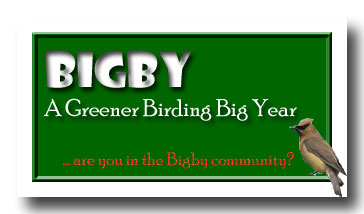BIGBY--the Big Green Big Year!